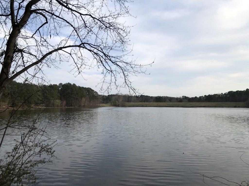 Shelley Lake